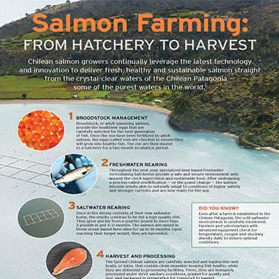 CSMC_Infographic_Salmon-Farming