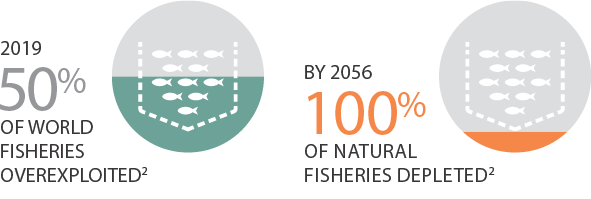 Farmed salmon statistics: 2019 50% of world fisheries overexploited. By 2056 10% of natural fisheries depleted