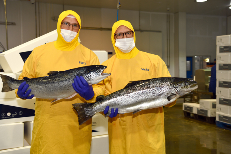 Two fishermen in jumpsuits holding up large salmon